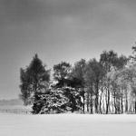 Verander je meest succesvolle landschapsfoto eens in zwartwit