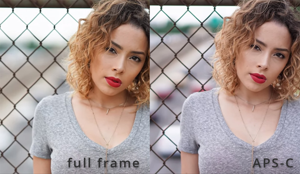 Full frame vs aps c ortiz