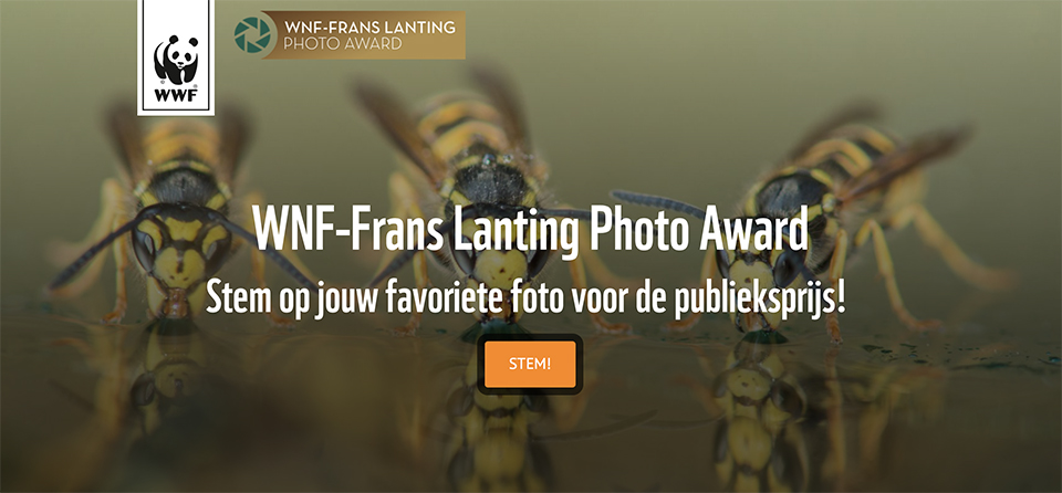 WNF Frans Lanting photo award