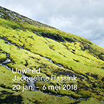 Unwired - Jacqueline Hassink