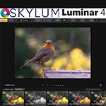 Review: Luminar 4 Golden Master versie