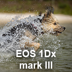 Review: Canon EOS 1Dx mark III